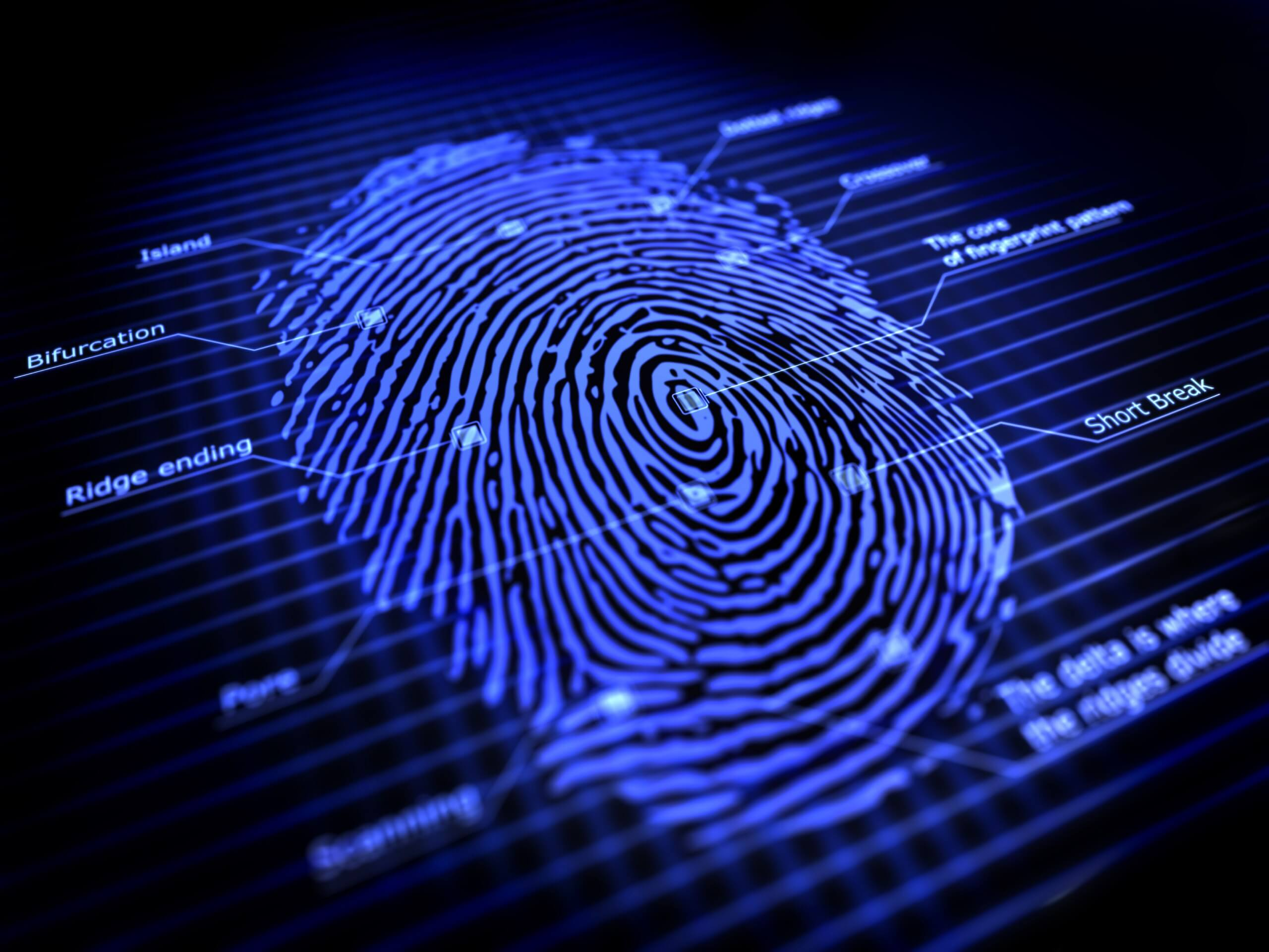 web authentication via biometrics